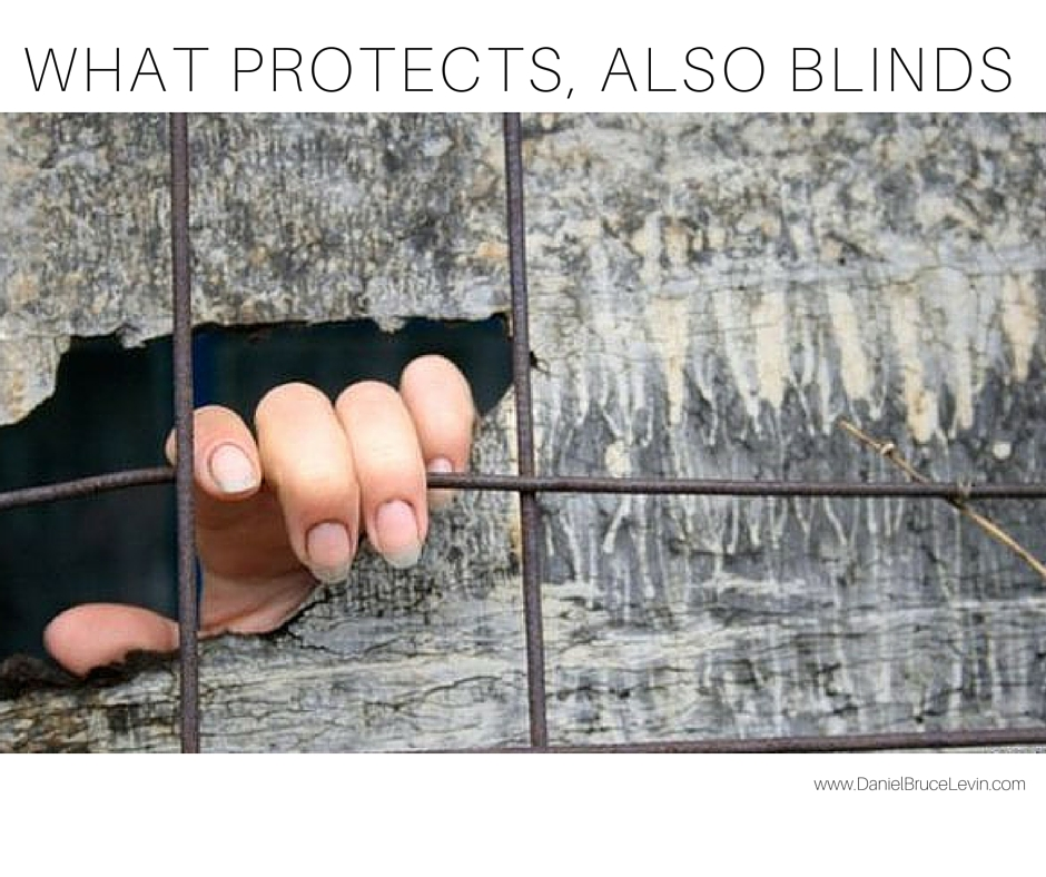 WHAT PROTECTS, BLINDS