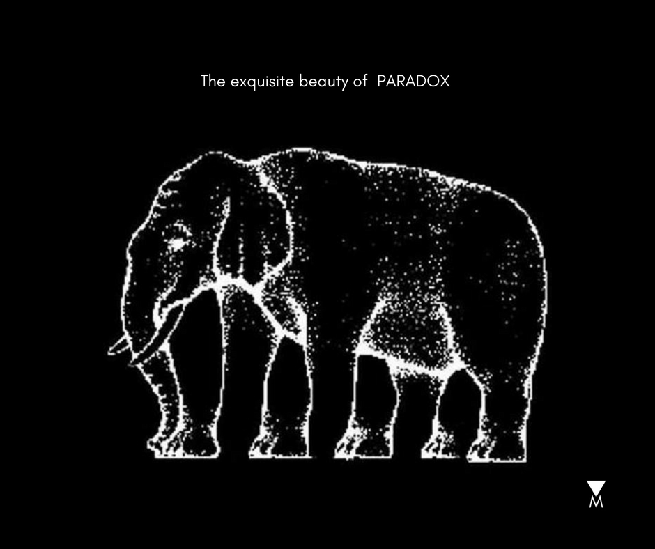 The Exquisite Beauty of Paradox