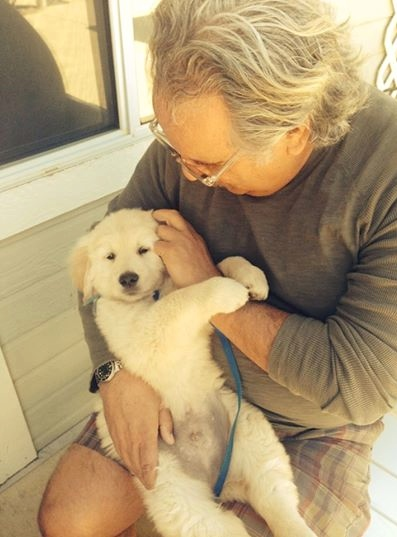 #10 LESSONS I LEARNED FROM MY NEW PUPPY